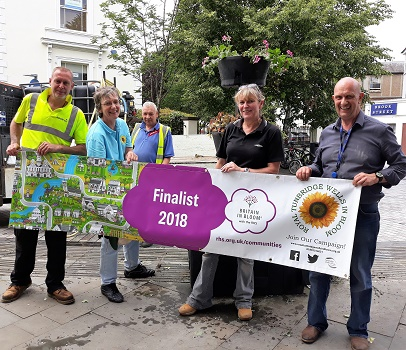 Royal Tunbridge Wells in Bloom - town centre planting