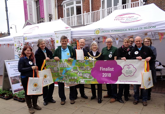 Royal Tunbridge Wells in Bloom - launch Friday 13.4.2018