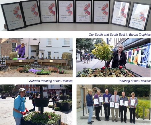 Royal Tunbridge Wells in Bloom - Bloom Team - portfolio 2018
