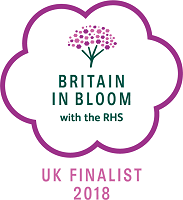 Royal Tunbridge Wells in Bloom - Britain in Bloom finalist